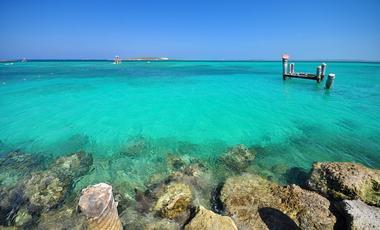 Amerikaanse Westkust,Caribbean
