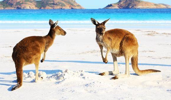 Australië1