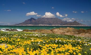 Zuid-Afrika,Afrika,Indische Oceaan